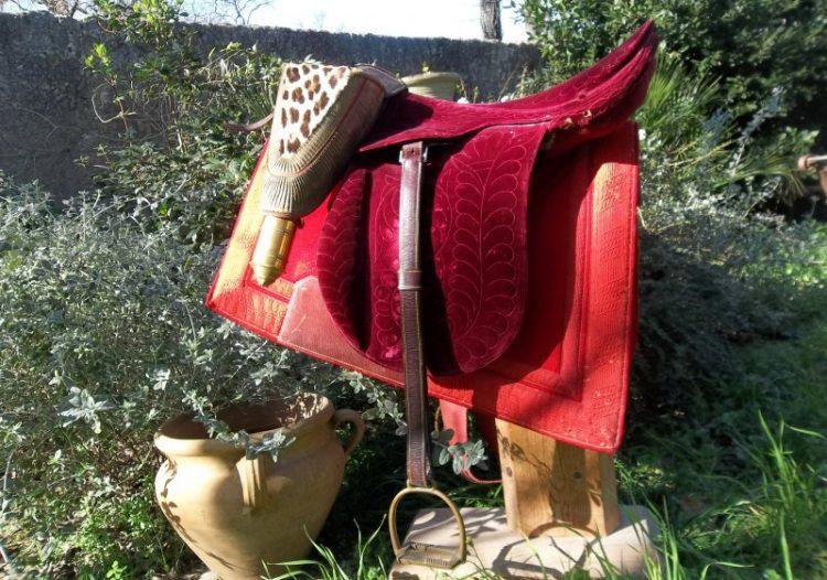 Antiquité équestre : Équipement du cheval